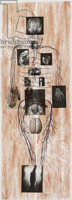 Reassembling the Self 7, 2012, (lithograph)