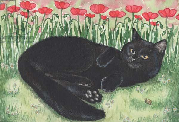 Black Cat With Poppies, 1993 (watercolour and pencil)