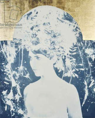 Asteria, 2014, (cyanotype with 22 carat gold leaf on paper)