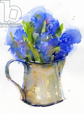 Hyacinth in pitcher, 2014, (watercolor)
