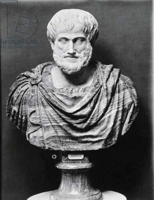 Bust of Aristotle (384-322 BC) (marble) (b/w photo)