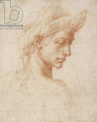 Ideal Head, c.1518-20 (red chalk on paper)