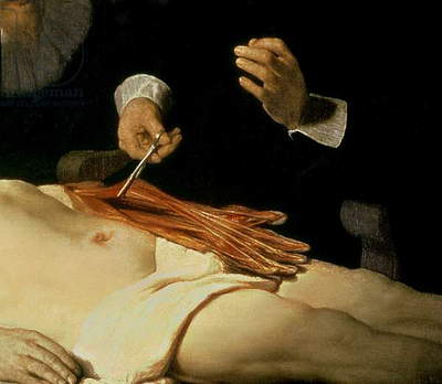 The Anatomy Lesson of Dr. Nicolaes Tulp, 1632 (oil on canvas) (detail of 7543)