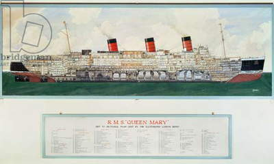 Sectional Plan of R.M.S. Queen Mary by G.Havis (20th century plan)
