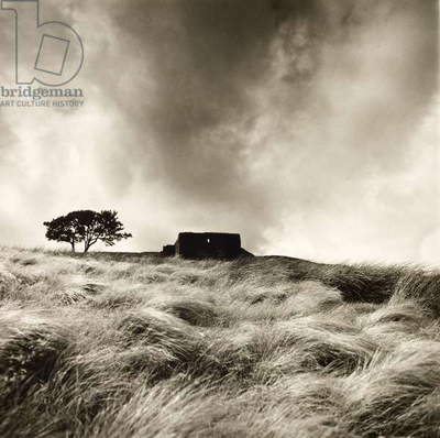 Top Withens near Haworth, Yorkshire, 1977 (b/w photo)