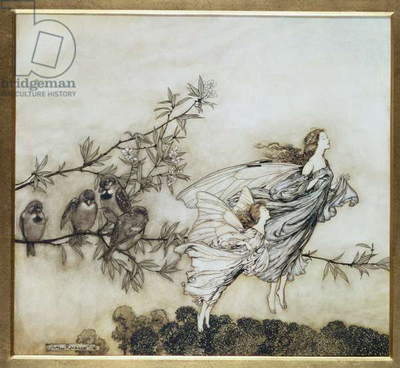 The Fairies have their Tiff with the Birds, 1906 illustration for 'Peter Pan in Kensington Gardens' by J.M. Barrie, pub. 1906 (ink and w/c)