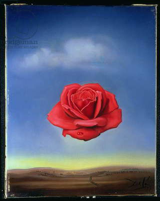 The Rose, 1958 (oil on canvas)