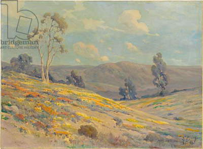 California Valley (oil on canvas)