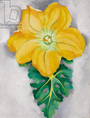 Squash Blossom No. II, 1925 (oil on board)