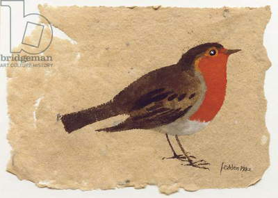 Robin, 1982 (w/c & bodycolour on paper)