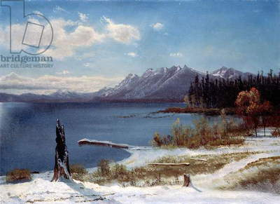 Lake Tahoe (oil on paper laid on board)