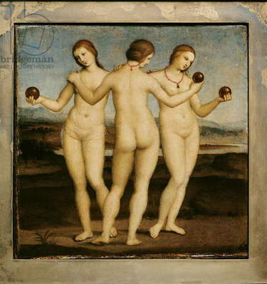 The Three Graces, 1504-05 (oil on panel)