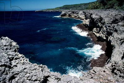 Volcanic coast, Cap des Pins, Lifou, Loyalty Islands, New Caledonia (overseas territory of French Republic) (photo)