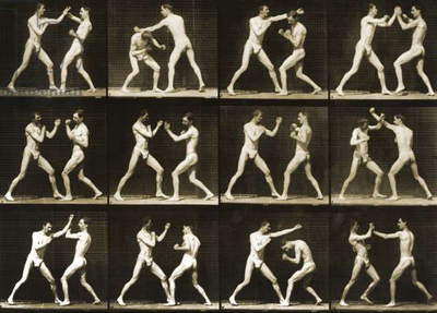 Two men boxing, from the 'Animal Locomotion; series, c.1881 (b/w photo)