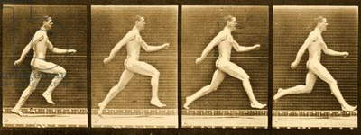 Image sequence from 'Animal Locomotion' series, c.1887 (b/w photo)