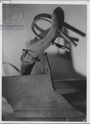 Plow and Yoke, 1935-36 (b/w photo)