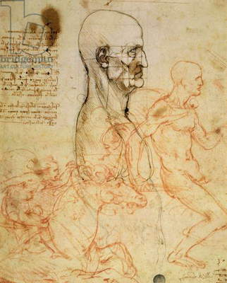 Torso of a Man in Profile, the Head Squared for Proportion, and Sketches of Two Horsemen, c.1490 and c.1504 (pen & ink and red chalk over metalpoint on paper