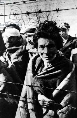 Survivors of Auschwitz concentration camp standing near a fence during the arrival of the Red Army, 27th January 1945 (b/w photo)
