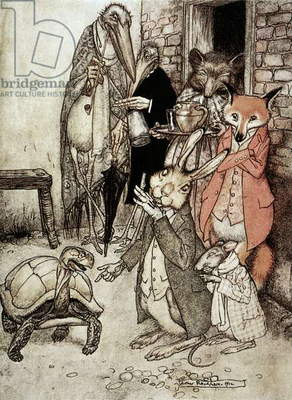 AESOP: TORTOISE & THE HARE 'The Tortoise and the Hare.' Illustration by Arthur Rackham (1867-1939) for Aesop's fable.