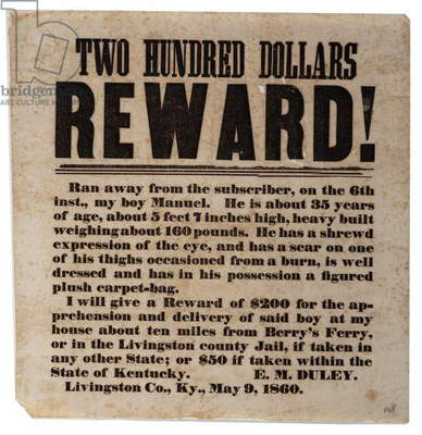 $200 Reward!, 9th May 1860 (litho)