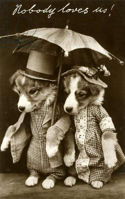 'Nobody Loves Us!', Collie Dog Puppies Holding an Umbrella, 1908 (gelatin silver print)