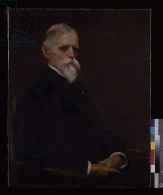 General Lew Wallace (oil on canvas)