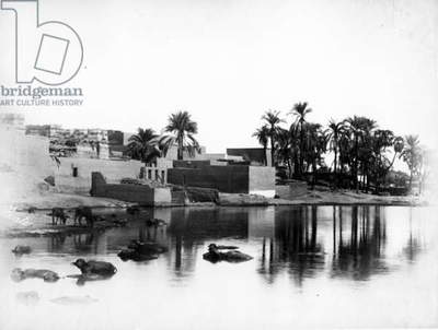 Luxor Seen from a Nile Boat, c.1860-80 (b/w photo)
