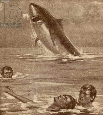 19th century illustration of a man rescuing a swimmer with a shark in the background (litho)