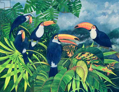 Toucan Talk (w/c and gouache on paper)