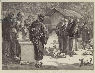 Sketches in Japan, feeding Puppy-Dogs at the Buddhist Temple of Oyama (engraving)
