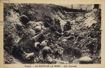 A trench, Ravine of Death, Verdun, France, World War I (b/w photo)
