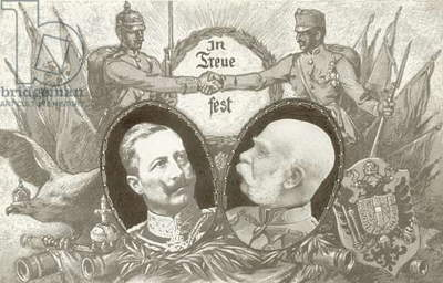 The alliance between the German and Austro-Hungarian Empires (litho)