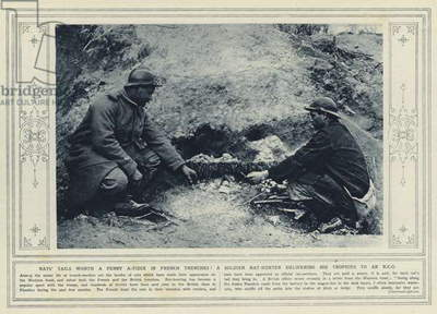Rats' tails worth a penny a-piece in French trenches! A soldier rat-hunter delivering his trophies to an NCO (b/w photo)