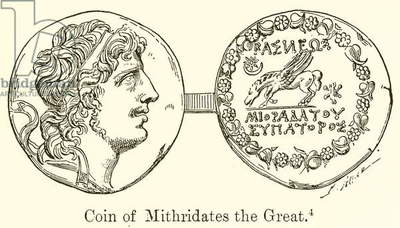 Coin of Mithridates the Great (engraving)
