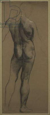 Male Nude Study (black & white chalk on brown paper)