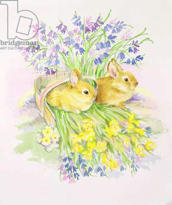 Rabbits in a basket with Daffodils and Bluebells