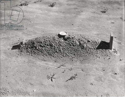 Child's Grave, Hale County, Alabama, 1936 (gelatin silver print)