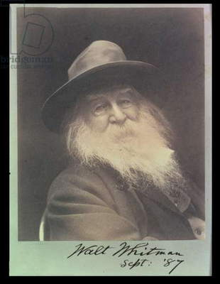'The Laughing Philosopher', a portrait of Walt Whitman (1819-91) September 1887 (b/w photo)