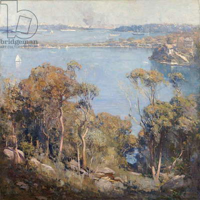 Sydney Harbour, 1907 (oil on canvas on plywood)