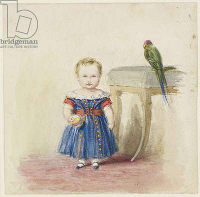 The Prince of Wales with a Parrot, 1843 (w/c & bodycolour over pencil on paper)