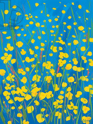 Lympstone Buttercups, 2008 (gouache on paper)