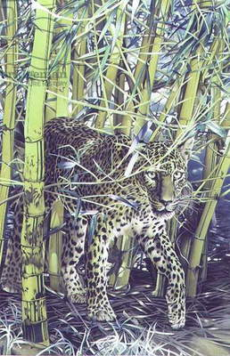 Leopard with Bamboo, 1989 (gouache on paper)