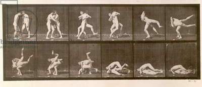 Two Men Wrestling, plate 347 from 'Animal Locomotion', 1887 (b/w photo)
