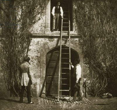 The ladder, April 1844 (salt paper print from calotype negative)