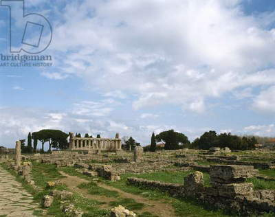 Italy. Paestum. Temple of Athena or Ceres.