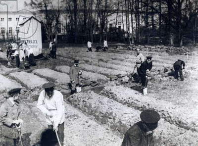 Photograph of the late Czar and his family working in garden