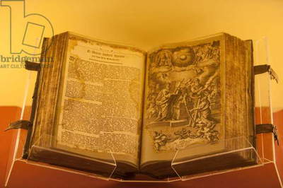 Martin Luther Bible (photo)