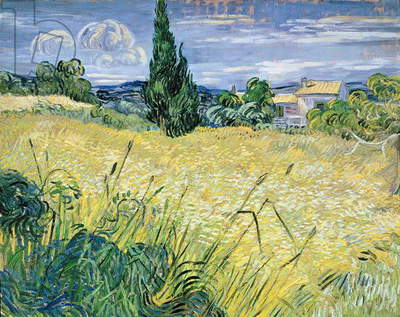 Green Wheatfield with Cypress, 1889 (oil on canvas)
