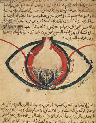 Anatomy of the Eye, from a book on eye diseases (vellum)