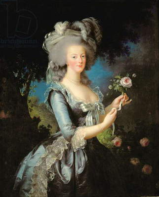 Marie Antoinette with a Rose, 1783 (oil on canvas)